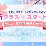春のキャンペーン!